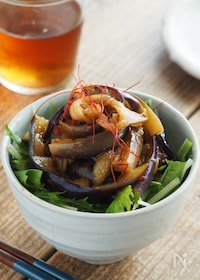 『レンジで簡単!ピリ辛なすのミニ丼【大量消費・おつまみ】』