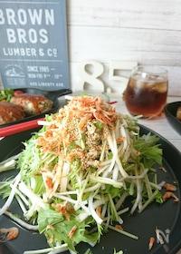『パリパリ!水菜と大根のサラダ』