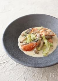 『鮭と白菜のクリーム煮』