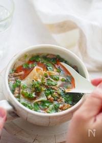 『包まない、焼かない、ごはんが止まらない!ほぼ餃子風スープ』