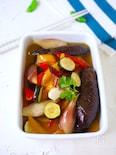 トースターで簡単!夏野菜マリネ【作り置き・お弁当・常備菜】