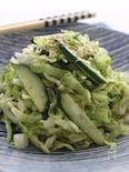 春キャベツときゅうりの簡単中華サラダ
