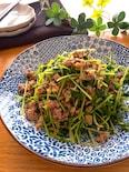 5分‼️節約レシピで大満足のおかず♡豆苗とひき肉の香味炒め