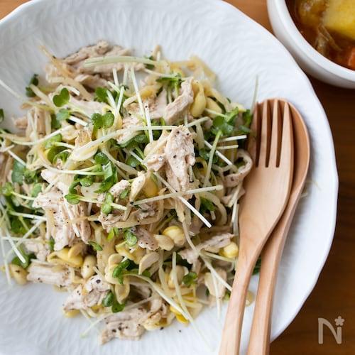 茹で鶏と豆もやしの中華風サラダ*