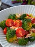 抱えて食べたい!ブロッコリーとトマト、カニカマのサラダ