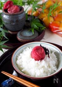 『【ジップ式袋で作れる】失敗しない減塩梅干し作り*赤紫蘇梅漬け』