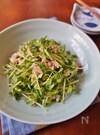 豆苗とツナのマスタードサラダ
