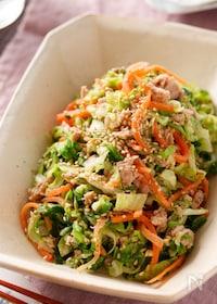 『春キャベツとツナのうま塩サラダ【#作り置き #野菜不足解消】』