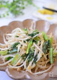 『あと一品の栄養満点副菜☆もやしと小松菜の簡単ナムル』