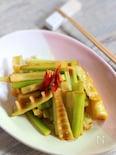 淡竹でメンマ風の炒め物