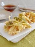 うどのかき揚げ。春のおかず、おつまみに♪天ぷら粉なし。