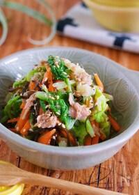 『抱えて食べたい♪『湯かけ白菜とツナ塩昆布の無限サラダ』』