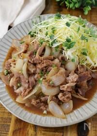 『【春キャベツが旨い】豚こま肉と新玉ねぎのさっぱり生姜焼き』