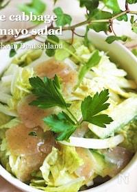 『白菜が止まらない★【白菜とこんにゃくのごまマヨサラダ】』