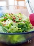 レタス1個でやみつきサラダ