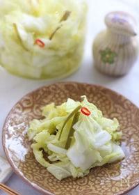 『ゆず風味の白菜浅漬け』