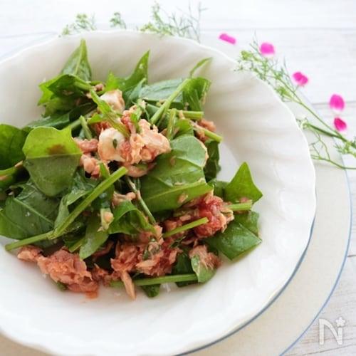 サラダほうれん草のトマツナサラダ
