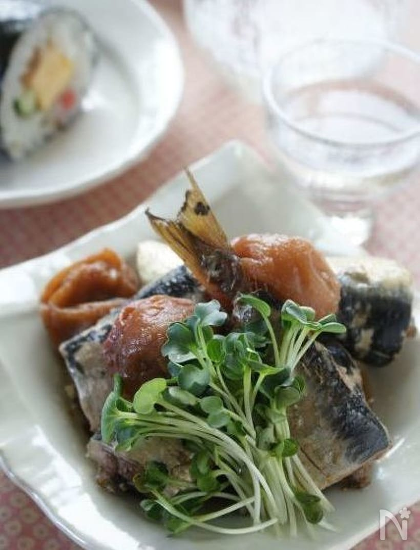 貝割れをそえた鰯の梅煮