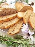 自然発酵でナッツ入りイタリアンチャパタ