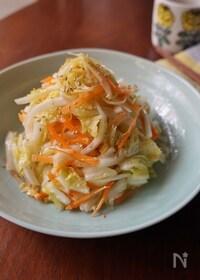 『しょうが香る白菜ナムル』