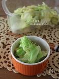 素材一品だけ!レシピ、やみつきキャベツのエビ風味