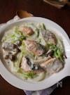 秋鮭と白菜のクリーム煮