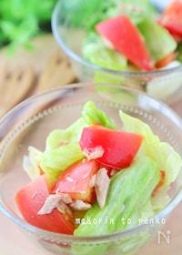 『ビニール袋で漬けるだけ*トマト・レタスとツナのマリネ風サラダ』