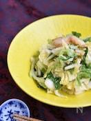 白菜のガーリックオイルサラダ【作り置き】