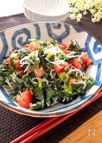 『レンチン♪栄養たっぷり♡モロヘイヤとしらすとトマトのサラダ』