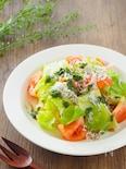 茹でキャベツとトマトの簡単青じそドレッシングサラダ