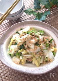 『箸がとまらない‼️無限白菜♡シャキシャキ白菜の和風サラダ』