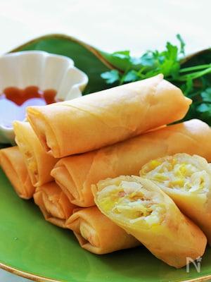 シャキっとあと引く、白菜とツナの春巻