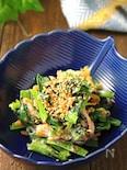 水っぽくならず旨味キープ♪小松菜の和風マヨサラダ