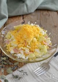 『春キャベツのミモザサラダ。パーティーやおもてなしの前菜に♪』