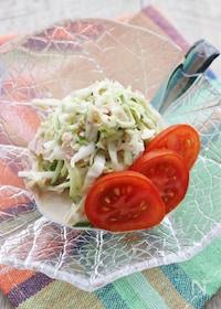 『キャベツとツナの簡単サラダ』