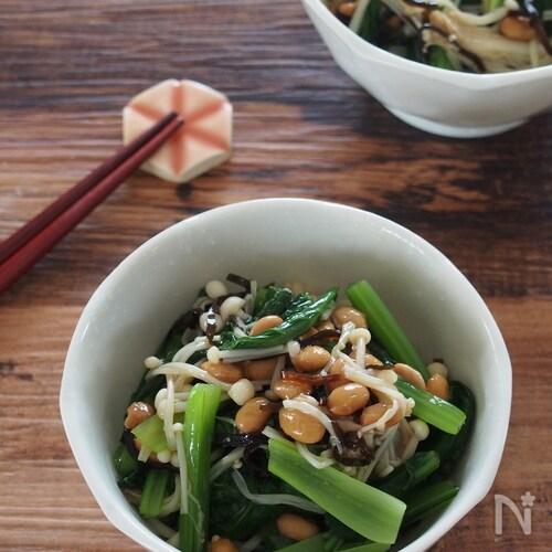 食物繊維・Ca・鉄分摂取!小松菜とえのきの塩昆布納豆和え