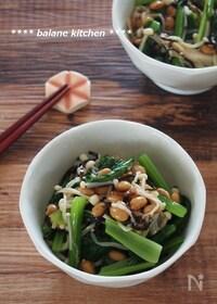 『食物繊維・Ca・鉄分摂取!小松菜とえのきの塩昆布納豆和え』