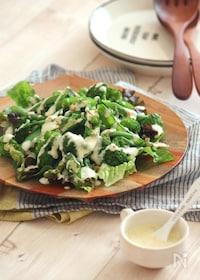 『グリーン野菜のチーズソースサラダ。』