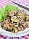 豚こま切れ肉となすの生姜照り焼き【作り置き】