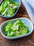 冬に食べたいさっぱりサラダ!レタスと大根のゆず塩サラダ