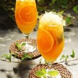 爽やか柑橘フルーツとハーブ&スパイススパークリング美人茶
