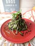 さっぱりしっかり鉄分補給!ひじきと水菜のサラダ