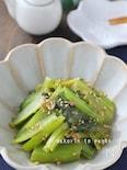 小松菜大量消費!レンジで簡単*小松菜の浅漬け