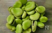 【季節仕込み】そら豆の茹で方と冷凍保存