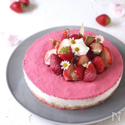 春色♪♪レア・ヨーグルトケーキ【混ぜるだけ・オーブン不要】
