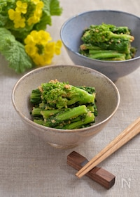 『菜の花のごま和え。春らしい和風の副菜。作り置きにも!』
