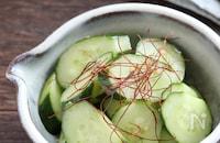 野菜料理で家族に1番人気!やみつききゅうり