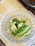 きゅうりの塩だれサラダ【作り置き】