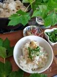 生姜とアサリの炊き込みご飯