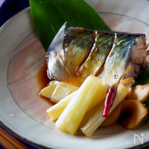 ご飯がススム!タレが美味しい鯖の甘辛しょうゆ煮#お弁当にも